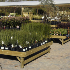 Square Shrub/ Bedding Display Table