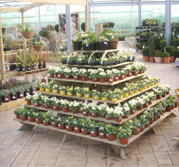 Plant Pyramid Display