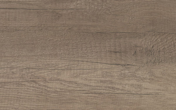 Nabraska Oak