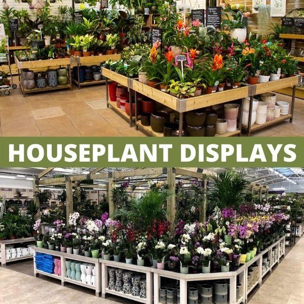 Houseplant Displays square thumbnail